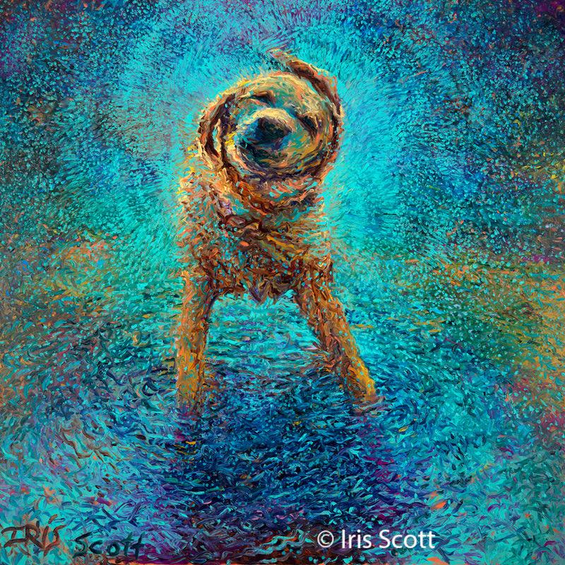 Picturi in ulei - Iris Scott