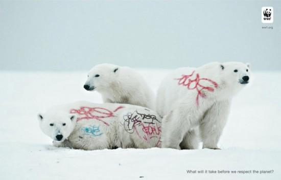 WWF: Graffiti pe animale pe cale de dispariție